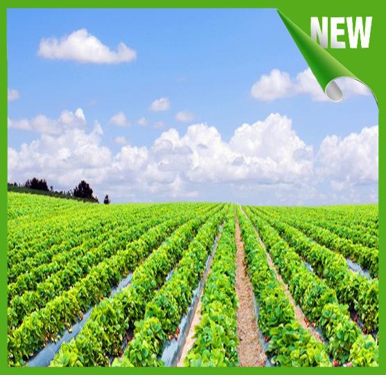 Sản phẩm ứng dụng trong nông nghiệp